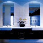 Shower Smart Mirrors
